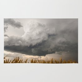 Marshmallow - Storm Cloud Over Golden Wheat in Kansas Rug