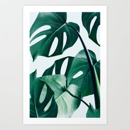 Monstera #society6 #artprints #buyart Art Print
