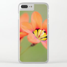 Bloomin Pretty Clear iPhone Case