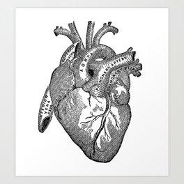 Vintage Anatomy Heart Art Print