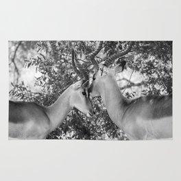 Gazelle (Black and White) Rug
