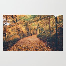 Autumn Walk New York City Rug