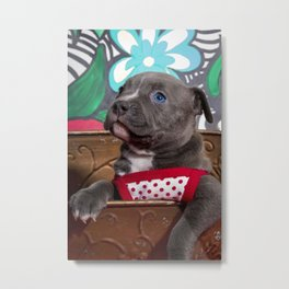Sweet Blue-Eyed Pitbull Puppy Girl in a Red and White Polka Dot Dress Metal Print