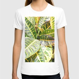 """""""Planted"""" T-shirt"""