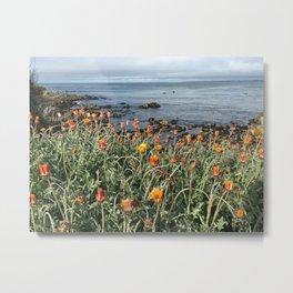 Orange blooms along the Pacific Metal Print