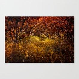 Autumn Reverie Canvas Print