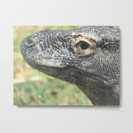 Eye of the Komodo Dragon Metal Print