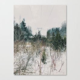 City and Nature Canvas Print