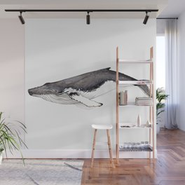 Humpback whale for whale lovers Wall Mural