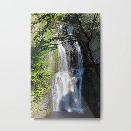 Bushkill Falls Metal Print