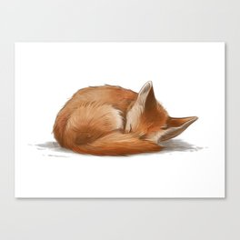 Let Sleeping Foxes Lie Canvas Print