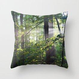 Cabin Light Throw Pillow