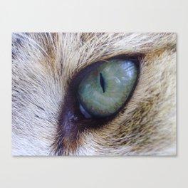 Looks like sauron eye Canvas Print