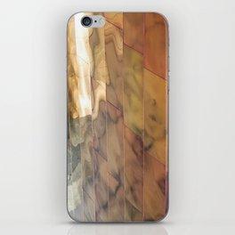 EMP No. 2 iPhone Skin