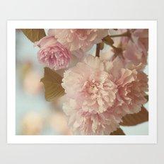 Yaezakura -- Double Cherry Art Print