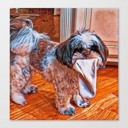 Sock Thief Canvas Print