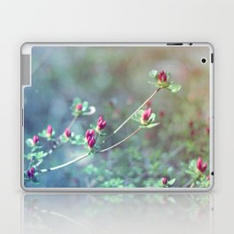 Flowers in the window 03 Laptop & iPad Skin