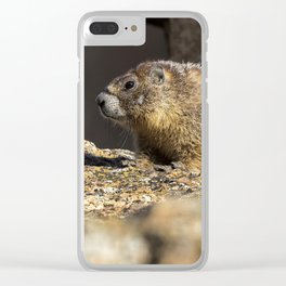 Two Marmots At Smith Rock Clear iPhone Case