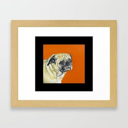 Worried Dog (pug) Framed Art Print