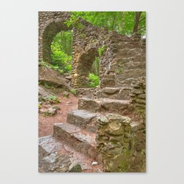 Forest Castle Ruins Canvas Print