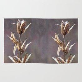 Still life- dried winter plant Rug