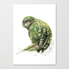 Mr Kākāpō Canvas Print