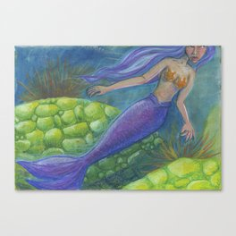 The Mermaid and The Turtles Canvas Print