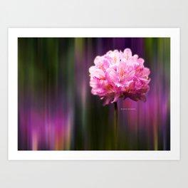 Flora Dreams  Art Print