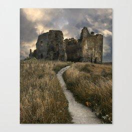 Forgotten castle in Estonia Canvas Print