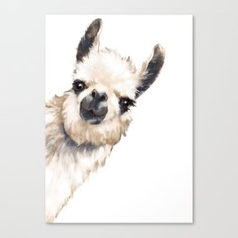 Sneaky Llama White Canvas Print