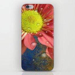 The Orange Daisey iPhone Skin