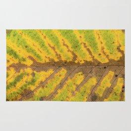 autumn leaf texture Rug