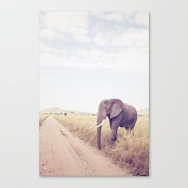 Serengeti II Canvas Print