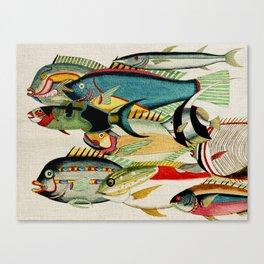 Fantastic Fish Tank Canvas Print