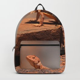 Karijini Lizard Backpack