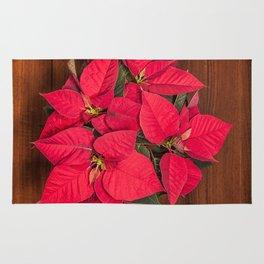 Red Christmas flower on brown wood Rug