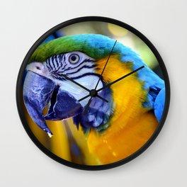 Parrots of Florida Wall Clock