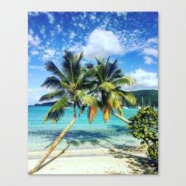 Palm Trees Canvas Print