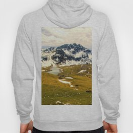 Mountain in the Spring Hoody