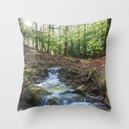 Early Spring Sunrise II Throw Pillow