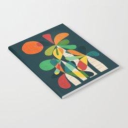 Palma Notebook