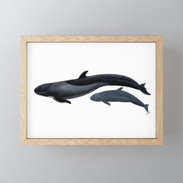 False killer whale Framed Mini Art Print