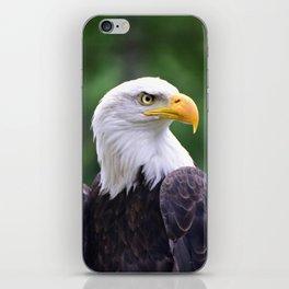 Regal Eagle iPhone Skin