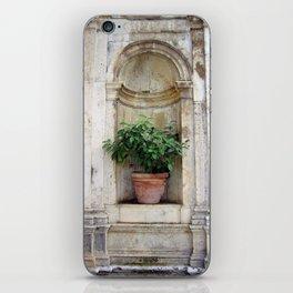 Urn with Lemon Tree iPhone Skin