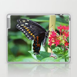 Swallowtail Sunshine Laptop & iPad Skin