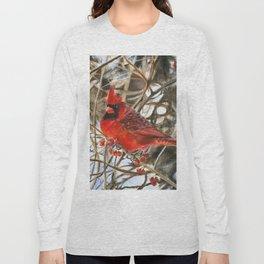 Winter Cardinal by Teresa Thompson Long Sleeve T-shirt