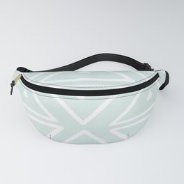 Big Triangles in Mint Fanny Pack
