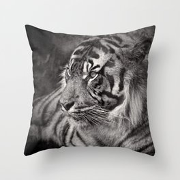 The mysterious eye of the tiger. BN Throw Pillow