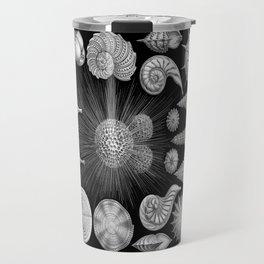 Sea Shells and Starfish (Thalamophora) by Ernst Haeckel Travel Mug