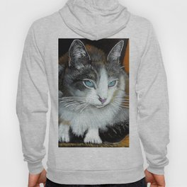 Younik the Cat Hoody